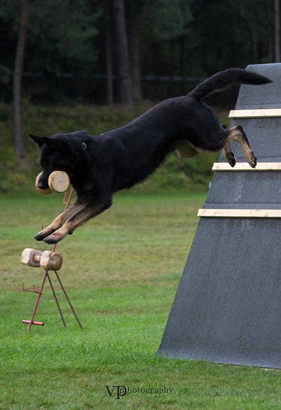 unbenanntLapp,Thomas_Zorro von der Mordschau_022